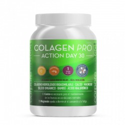 Colagen Pro Action Day 30 300gr Corpore Protect
